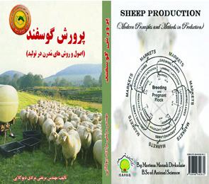 Sheep moradi
